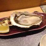 46753032 - 厚岸の牡蠣