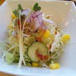 コタロウ - Bセットのサラダ