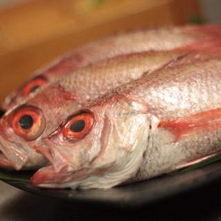 旬の魚を味わえます!!