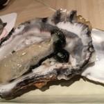 46813797 - 生牡蠣