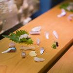 地魚料理 海山 - 料理写真:御造り 由良の地魚たち