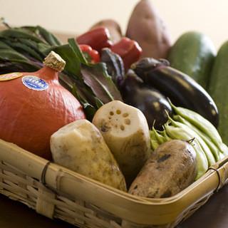 こだわり農家の朝どれ新鮮野菜