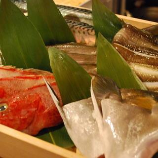 築地~小田原の魚、直送です。