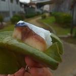 柿の葉ずし 平宗 - 綺麗な銀面だが厚みは不足気味