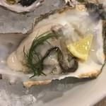 イタリアン&肉バル 北の国バル - 生牡蠣♪
