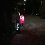 おいしい料理とお酒 ぼちぼち - 南青山の裏路地に浮かぶ赤提灯