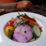 47013364 - 新鮮野菜サラダ!