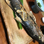 真魚家 - 料理写真:すずき