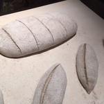 デュヌ・ラルテ - カンパーニュの大きなサイズは特注です。
