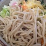 和風カフェ しゅしゅ - 蕎麦アップ