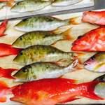 本日の島魚