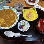 47152193 - カレー丼