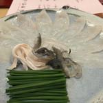 馬場乃町 はやし - 愛知県産天然虎河豚の刺身♡