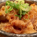 47188537 - 鶏天丼