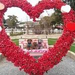 47206251 - バレンタイン限定♪ハートで可愛い☆