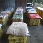 ラーメン倉庫 - 待合席はプラカゴをひっくり返して座布団を乗せたものです(^^)