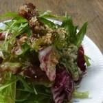 47239790 - ◆サラダ・・水菜・紫キャベツなどが盛られ、ドレッシングが酸味の強いものだとか。                       ドレッシングの量が少ないと言ってましたけれど。(^^;)