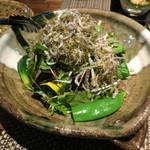 47308365 - フレッシュ野菜とジャコサラダ