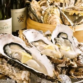 新鮮な魚貝を築地より毎日仕入れ。ブランド牡蠣食べ比べも◎