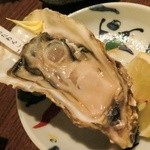 47352808 - 牡蛎