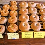 こぐまパン - ベーグル各種