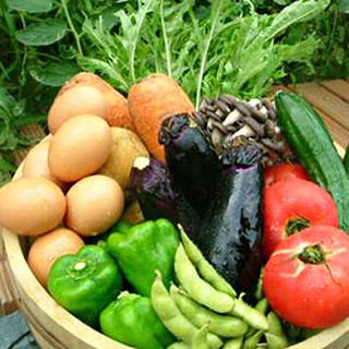 契約農家から仕入れる新鮮野菜を使用してます♪