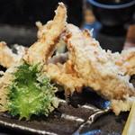 山元麺蔵 - 鶏ささみ天みぞれうどん(天ぷら)