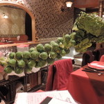 ビストロノミー・ラトリエ1959・ヨコハマ - 店主の計らいで見せてくれた芽キャベツ