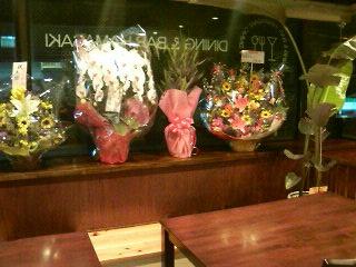 Dining Bar HAMASAKI