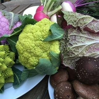 契約農家から直送の新鮮なお野菜が魅力!