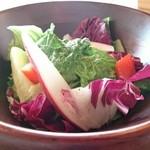 山小屋の台所 ミートラボ - サラダ(ランチセット)