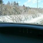 47553534 - 樹氷、うまく撮れない