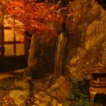 闇市倶楽部 - 廊下から見える庭。秋の紅葉や雪景色など雰囲気◎