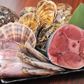 【新鮮魚介】築地直送!目利きによる厳選食材
