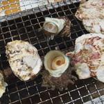 47639821 - 牡蠣・サザエ・ホタテ
