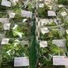 いずみファーマーズ葉菜の森 - 料理写真: