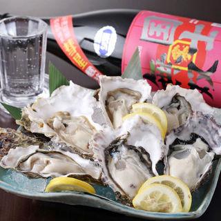 北海道直送♪新鮮な魚介類を楽しむ
