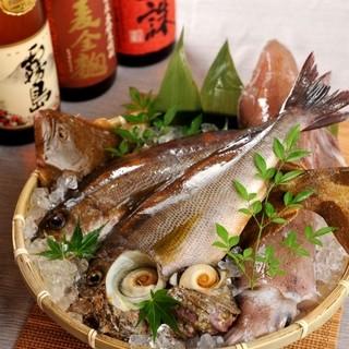 【NEWOPEN】全国各地から毎日直送される朝採れ鮮魚