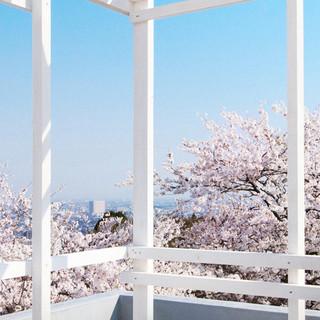 自然が作る素晴らしい景色と穏やかな空間