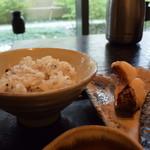 47855203 - 十穀米と魚