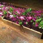 47859464 - テーブルの花が可憐でした。