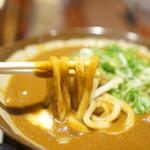 香川一福 - カレーのアップ