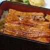 うなぎの伊勢元 - 料理写真:うな重