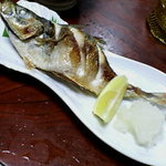 ポンポコ - 焼き魚