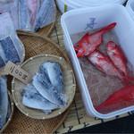 ハヤママーケット日曜朝市 - 鮮魚や干物も