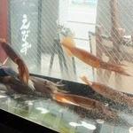 えびず - 水槽の中では旬の魚が多く泳いでいます