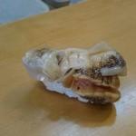 甚六寿司 - 料理写真:つぶ貝