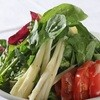 ・彩り野菜のサラダ ラベルでドレッシング
