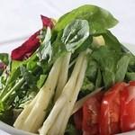 ラ・ベルデ - 【Insalata】彩りお野菜のサラダ ラベルデドレッシング