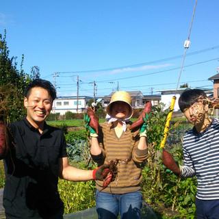 日本全国から!【自然・有機・減農薬栽培のお野菜達】
